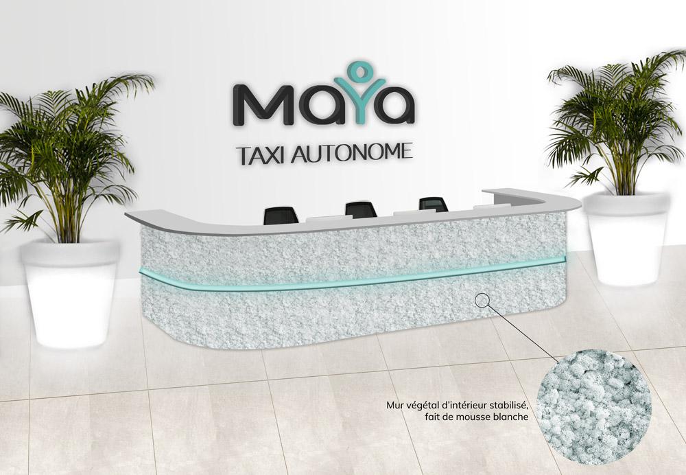Design banque d'accueil Maya - Graphiste Diane Gaillard
